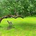 A place for quiet contemplation...