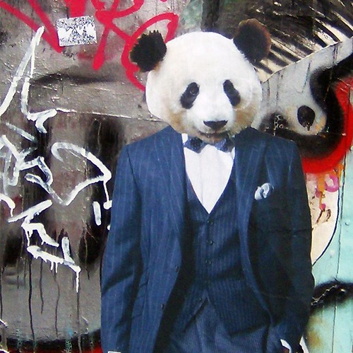 dapper panda | by Cranky Old Mission Guy