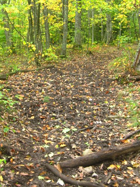 Muddy Iron Mtn Trail