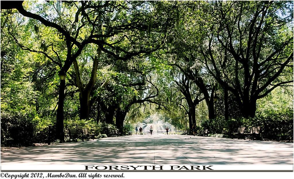 Forsyth Park Savannah Ga Forsyth Park Is A Large City P Flickr