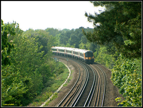 SWT 444022 passing Borne Valley | by Coolcats100