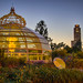 2012.242 (The Sun Sets on Phipps Conservatory)