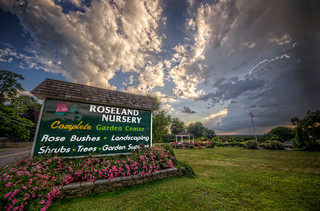 Sunset at Roseland Nursery | by Frank C. Grace (Trig Photography)