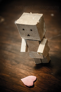 All danbo wanted was to be Loved | by ind{yeah}