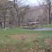 Shenandoah Campsite Visitors