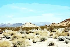 Cutouts of the Mojave Desert 2