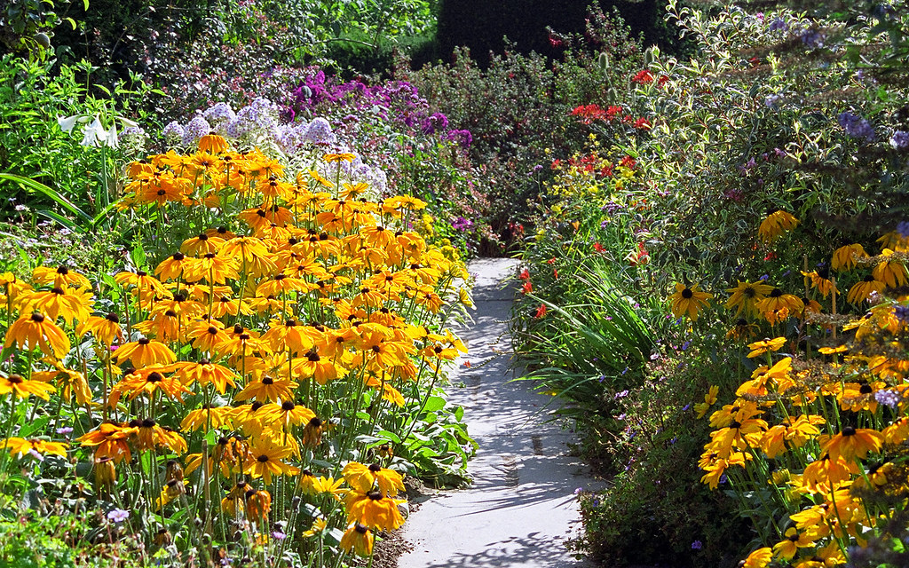 raised garden bed soil walmart