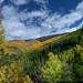 Santa Fe Ski Basin - Santa Fe National Forest