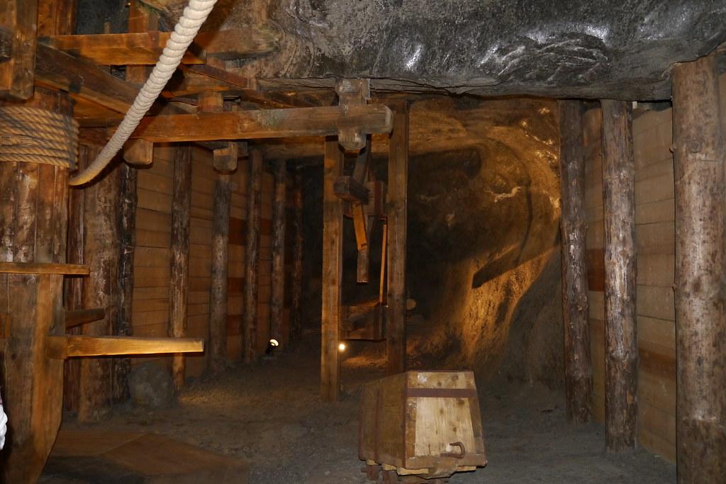 Madera conservada por la sal