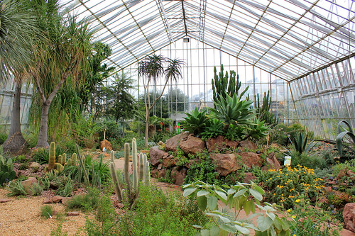Cactus Greenhouse, Edinburgh Royal Botanic Gardens | by sjwmobile