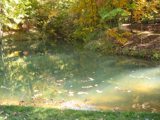 How To Empty Backyard Pond : clear pond  Flickr  Photo Sharing!