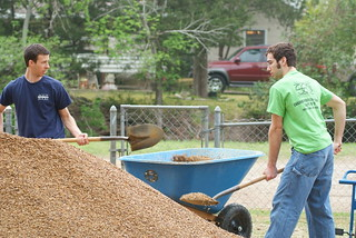 Big Event Volunteers Scooping Mulch | by Texas A&M WWW
