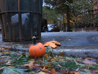 Post-Sandy pumpkin carnage, Prospect Park West | by Scoboco