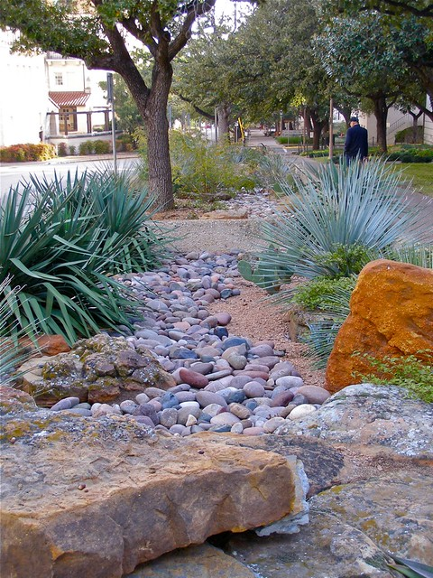 Xeriscape Texas Style Flickr Photo Sharing