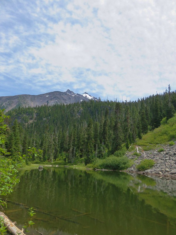 Mt. Jefferson from a pond along the Pacific Crest Trail