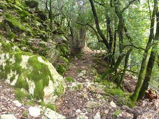 Après le Valdu Grande: le chemin après le démaquisage