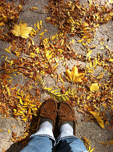 Fall | by Jeni Baker | In Color Order
