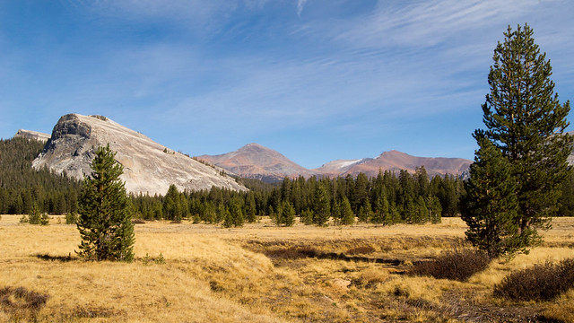 Mount Dana (13,061', 2nd tallest in park) and Mount Gibbs (12,773') Tioga pass is to the north of Mt Dana, Mono pass to the south of Mt Gibbs.
