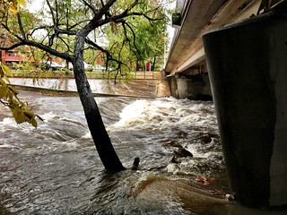 Hurricane Sandy - Four Mile Run creek and flooded trail | by Mrs. Gemstone