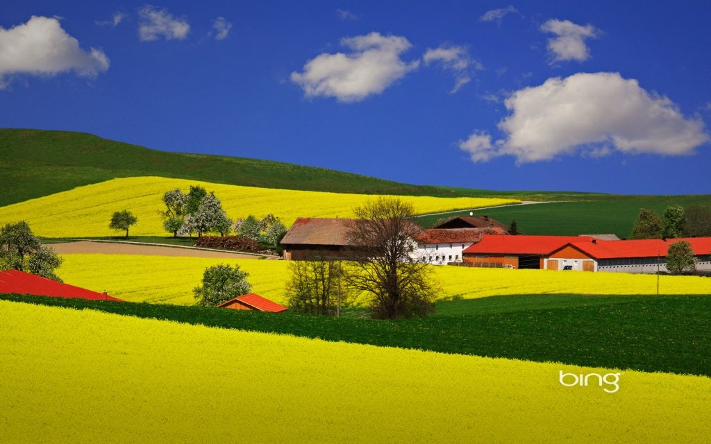 How to get your Bing Desktop image of the day back on Windows 8.1 ...