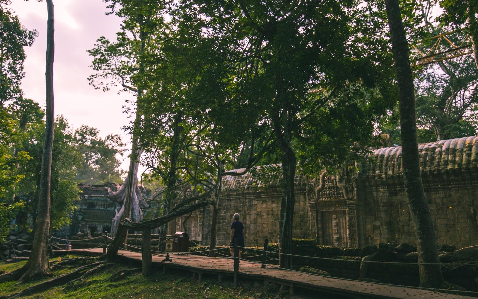 Angkor Wat etc.-12