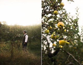 mountain view orchards | by hannah * honey & jam