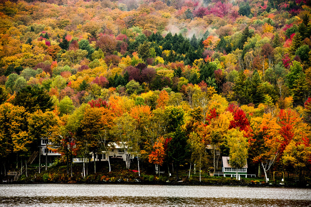 "lake elmore The town of lake elmore calls itself ""the beauty spot of vermont"" located in the southeastern part of lamoille county, elmore is mostly forested and agricultural land."