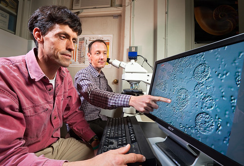 U.S. Department of Agriculture (USDA) Agricultural Research Service (ARS) entomologist Jay Evans and postdoctoral research associate Ryan Schwarz use a microscope to look at spores of the honey bee fungal parasite Nosema ceranae