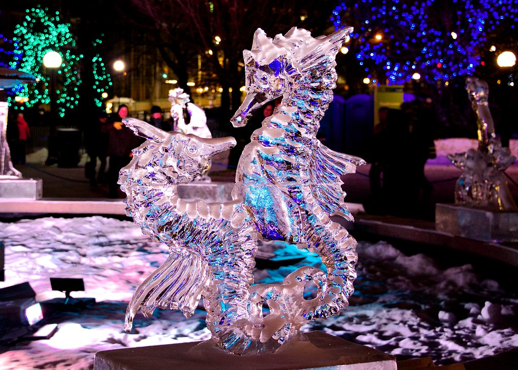 winterlude sea horses in ice