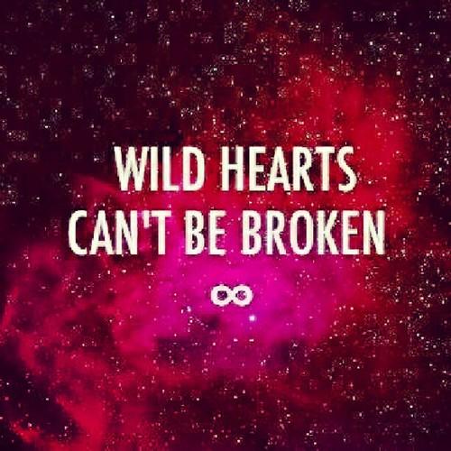 wild hearts can 39 t be broken heart love universe wilde flickr. Black Bedroom Furniture Sets. Home Design Ideas