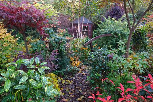 A walk through the autumn lower garden english garden - When you walk through the garden ...