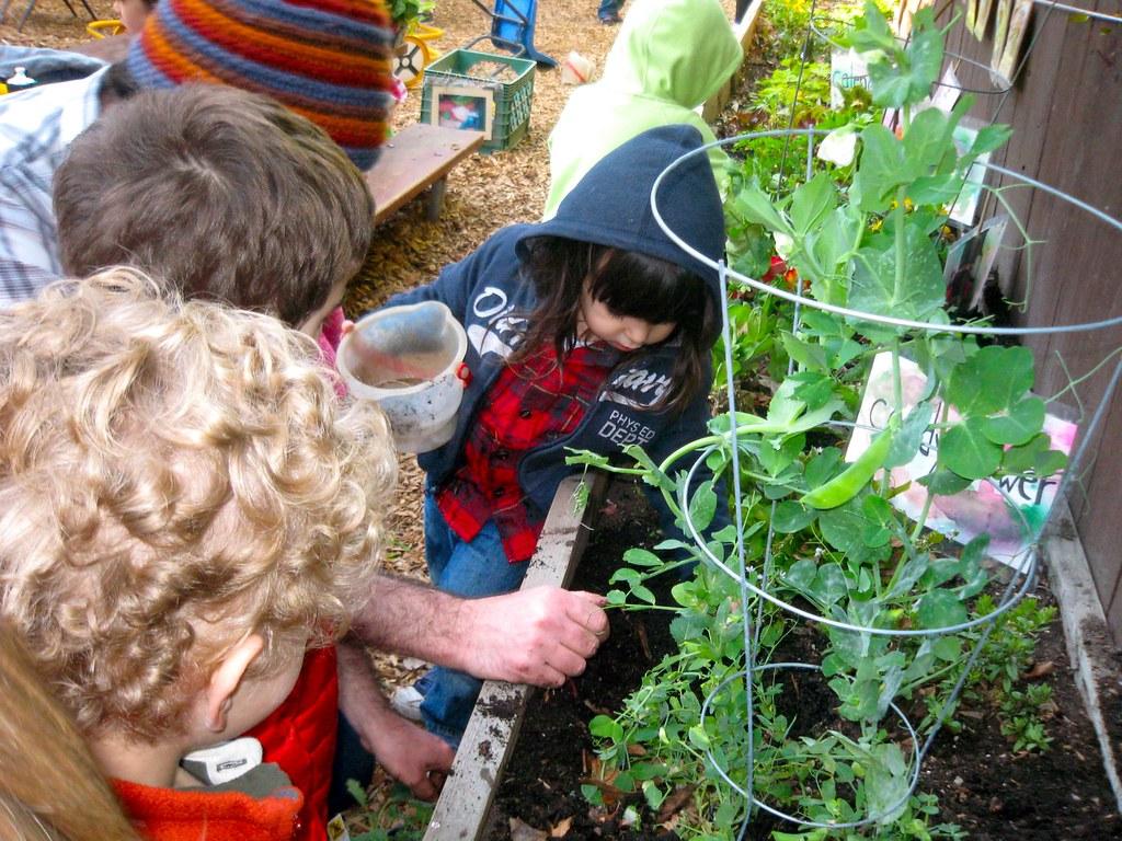 Gardening Class At Siena 39 S Preschool David Silver Flickr