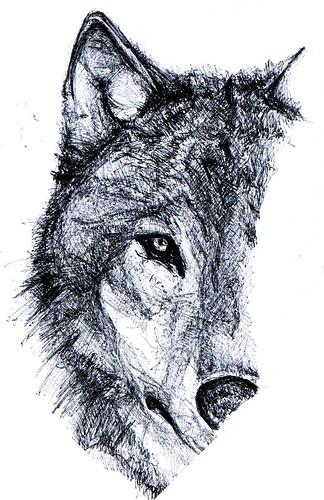 wolf sketch papermate kilometrico ballpoint pen
