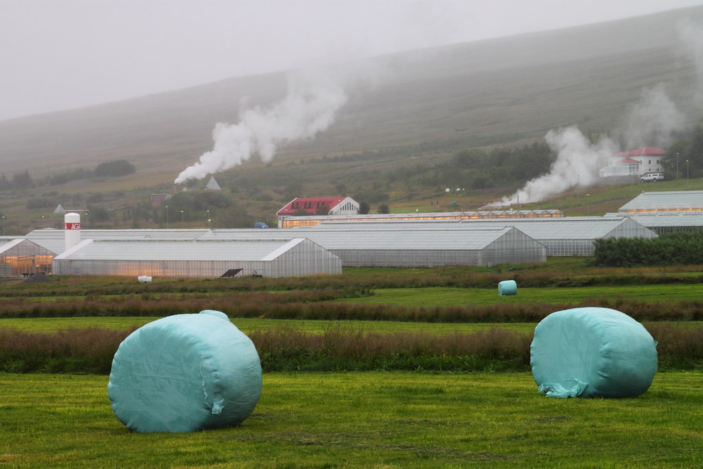 Agriculture In Iceland Apart From Space Heating One Of