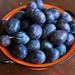 Italian plum prunes