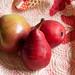 Apple & 2 Pears