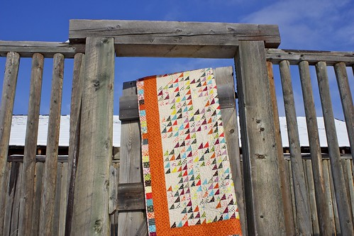 Chicopee Trails Quilt | by CoraQuilts~Carla