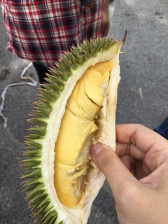 Co. Durian and Fruits Fiesta @ BS
