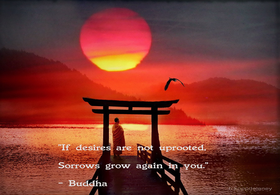 This Is The 62nd Of 108 Buddha Quotes: This Is The 82nd Of 108 Buddha Quotes
