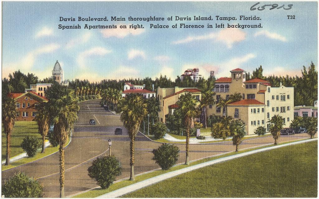 Davis Island Apartments For Rent
