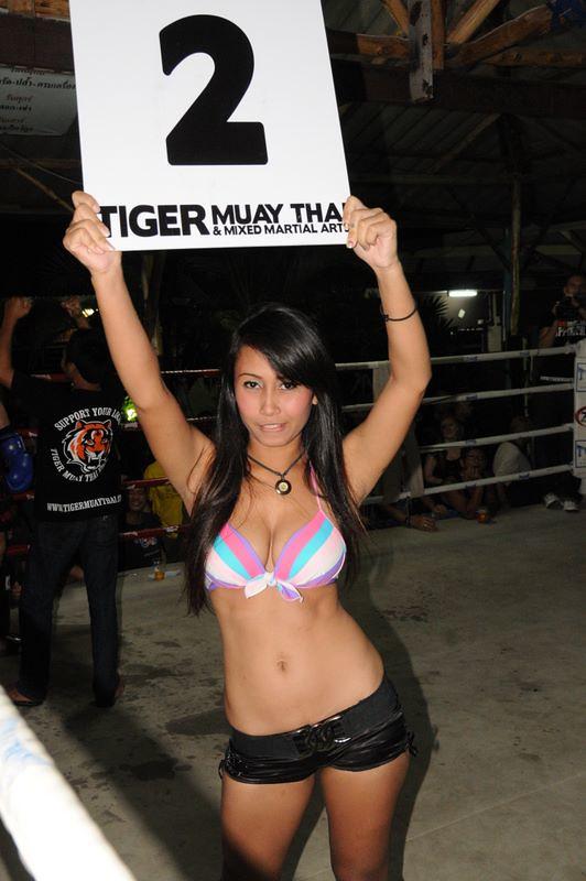 girl wild muay thai