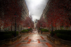 Cours le Royer (Old Montreal)