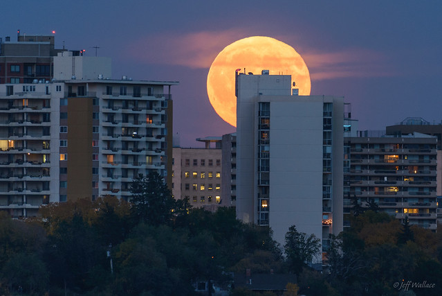 Harvest Moon, Edmonton, Alberta [Explored]