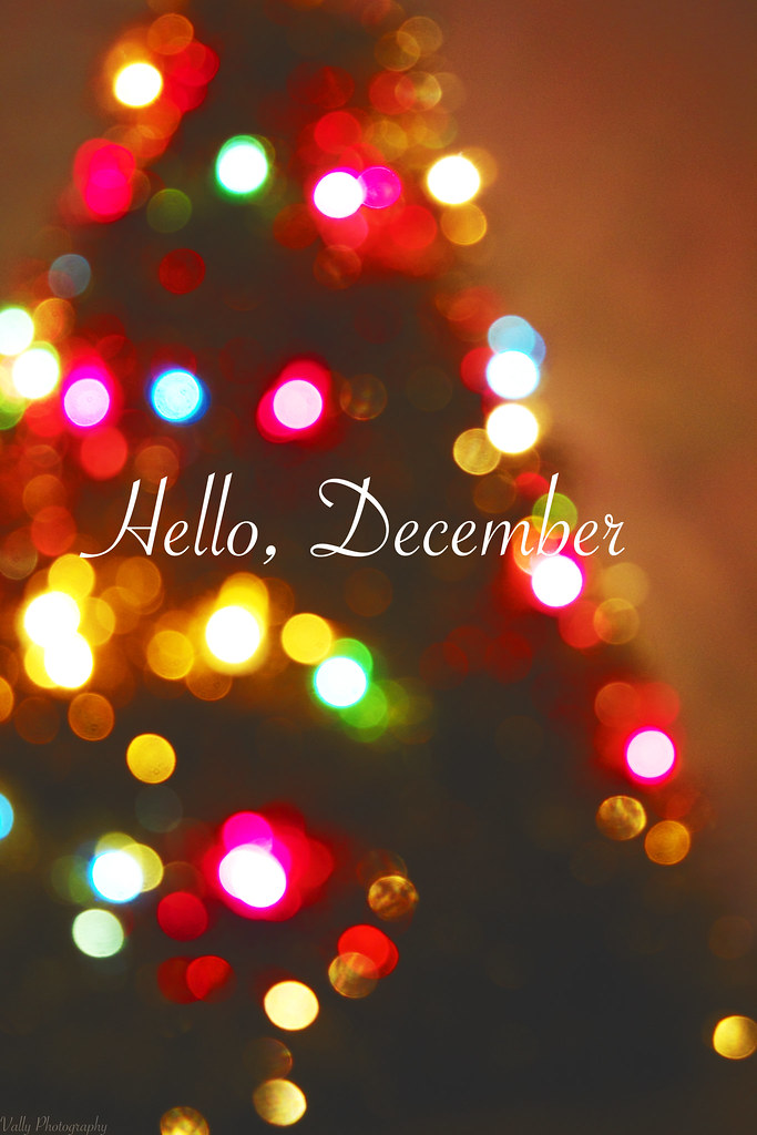 Hello, December | By Vally Photography!