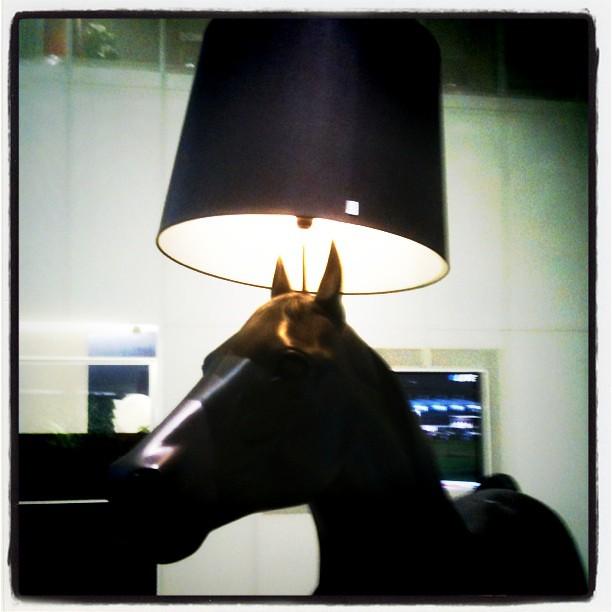 horse a horse a kingdom for a horse richard ii sh flickr. Black Bedroom Furniture Sets. Home Design Ideas