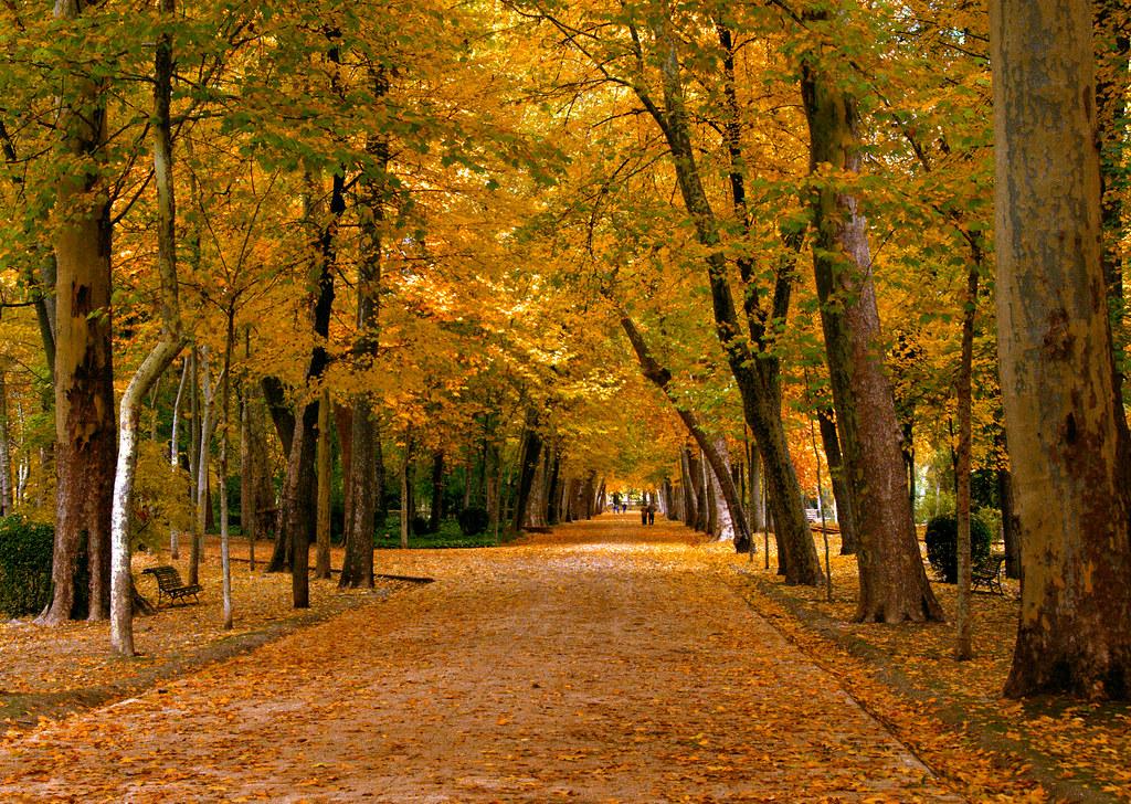 Palacio real de aranjuez jardines del principe madrid 006 for Jardines de aranjuez horario