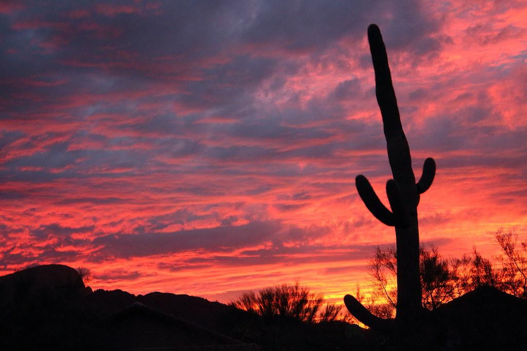 Tucson Arizona Sunset Nov 17 2012 Cindy Devin Flickr