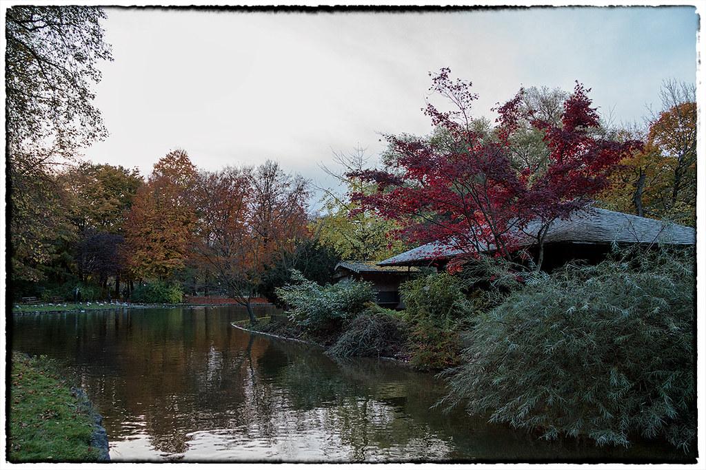 Casa del t dopo il tramonto giardino inglese monaco d - Giardino del te ...