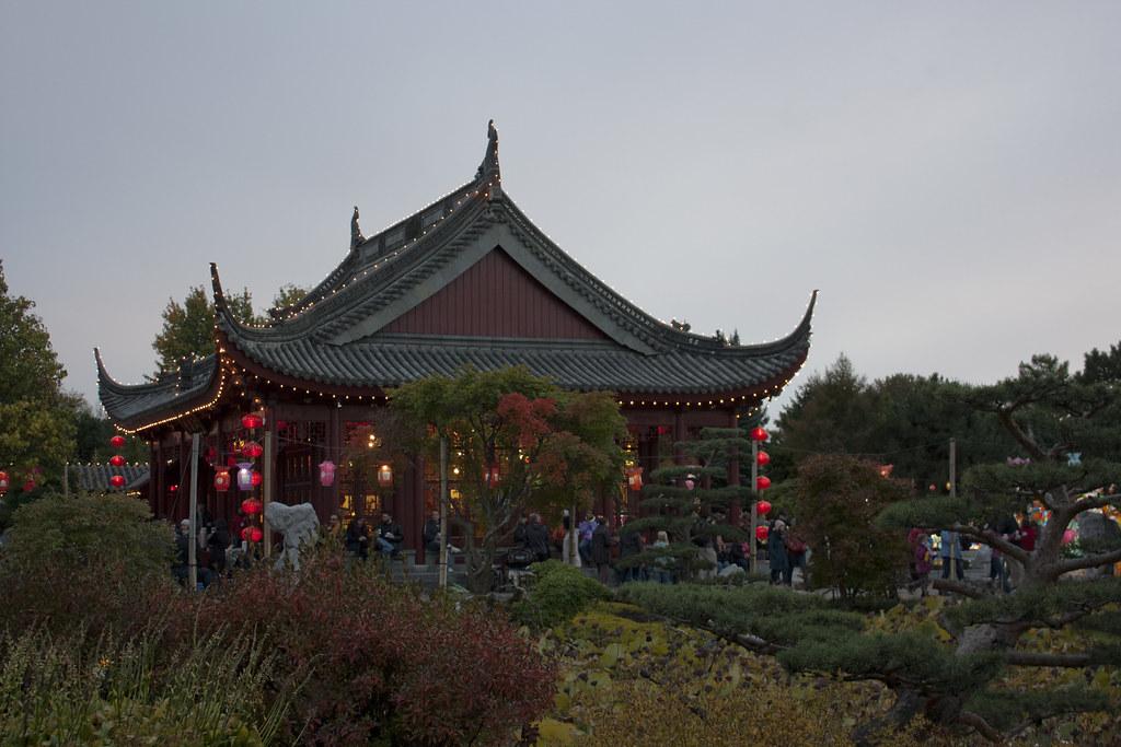 chinese lantern festival jardin botanique ricardo