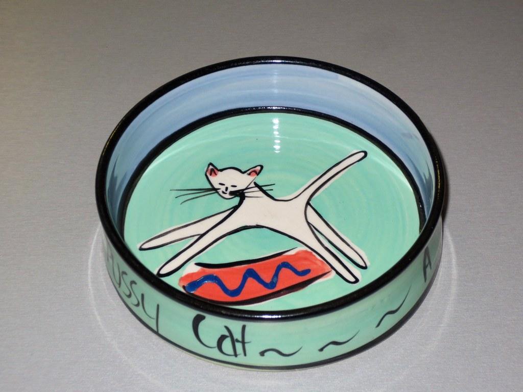 Cat Food Bowl Transparent